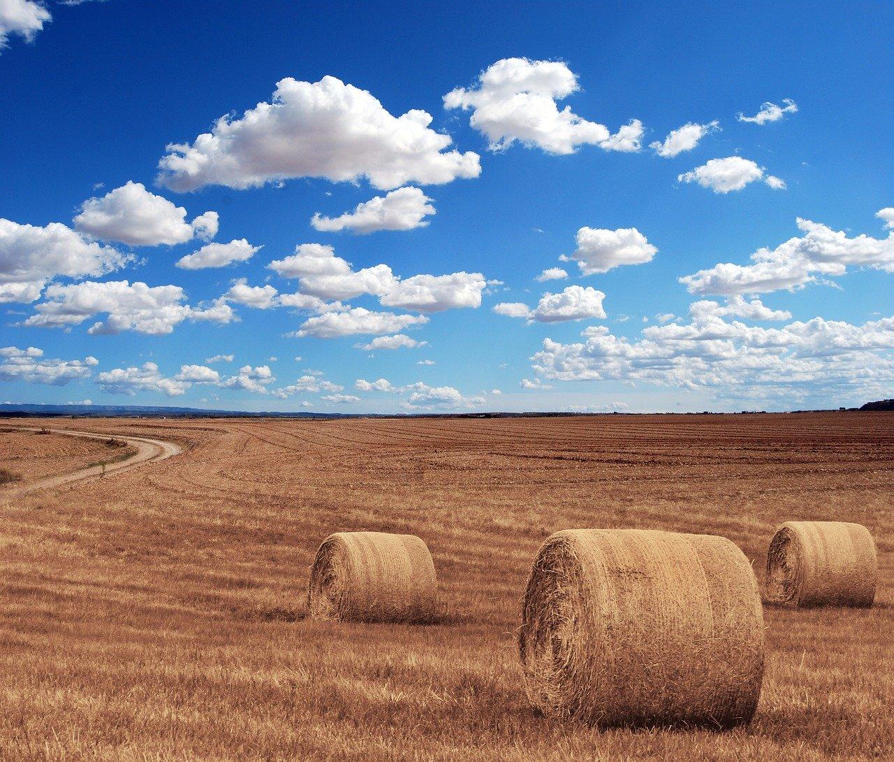 Hale do przechowywania maszyn rolniczych